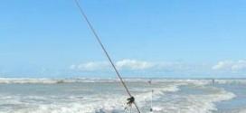 XXII Gincana de Pesca de Feliz Deserto – Relatório Geral da Apuração